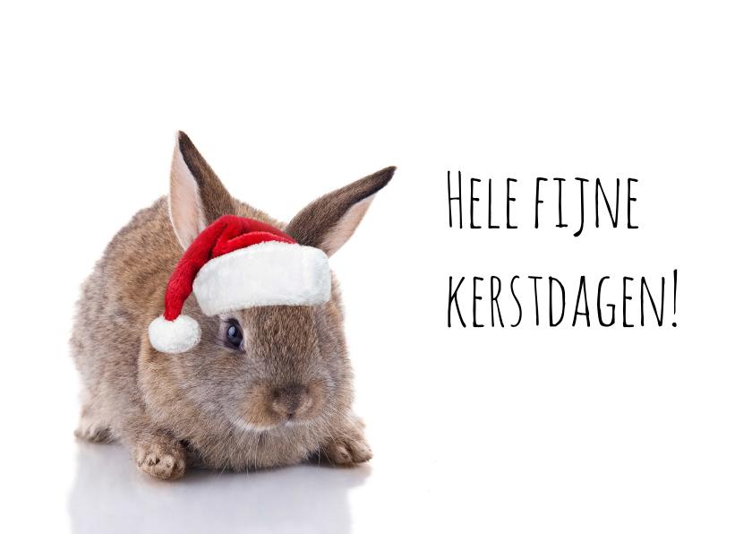 Kerstkaarten - Kerstkaart konijn met kerstmuts