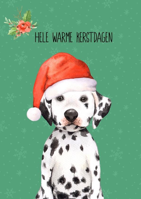 Kerstkaarten - Kerstkaart met een dalmatiër hond met een kerstmuts op