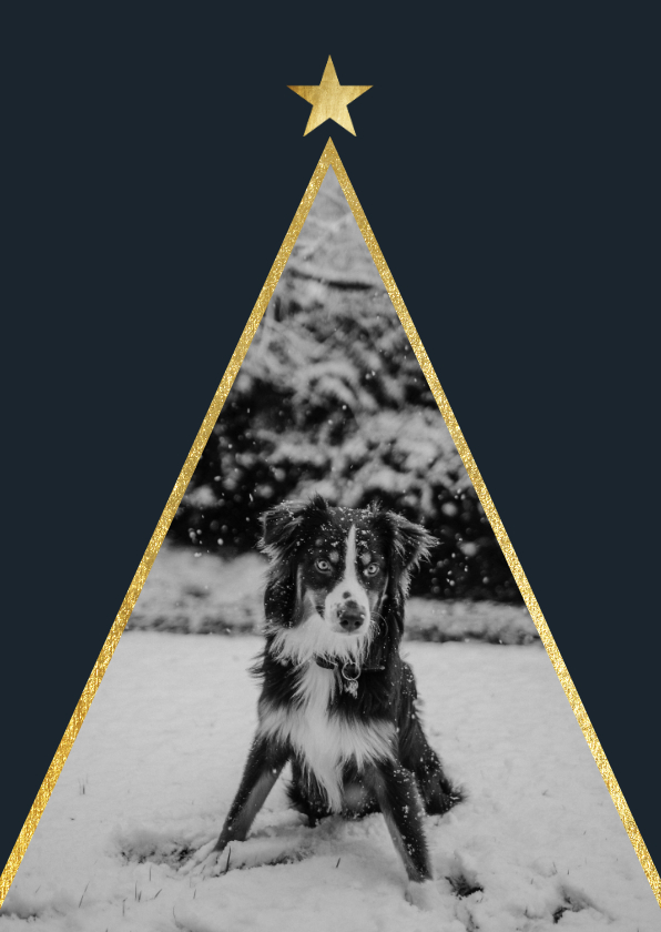 Kerstkaarten - Kerstkaart met foto en gouden ster