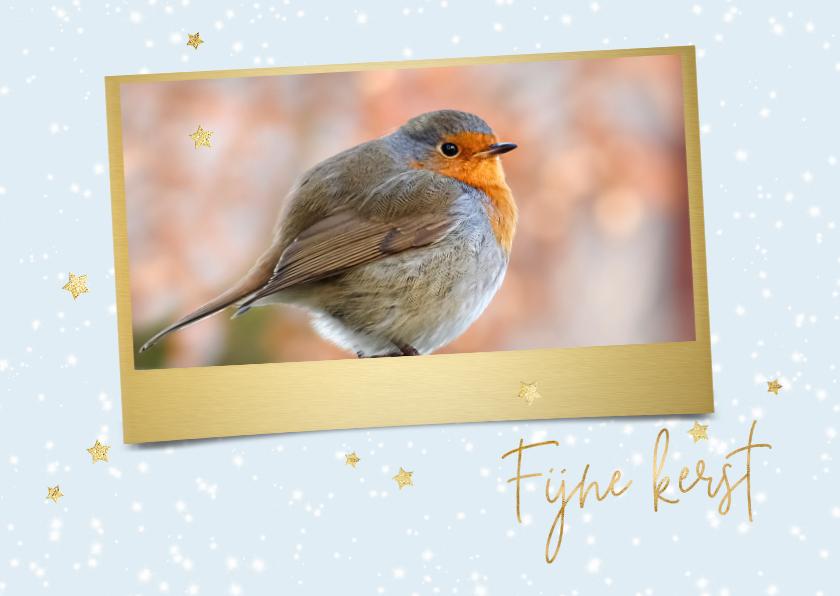 Kerstkaarten - Kerstkaart met foto roodborst