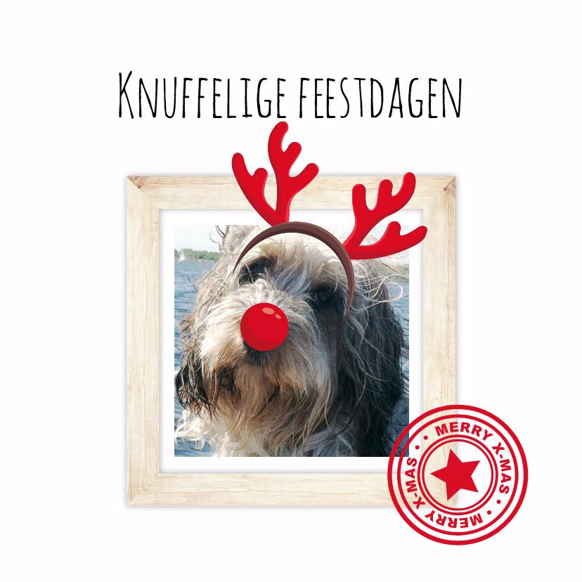 Kerstkaarten - Kerstkaart met je huisdier