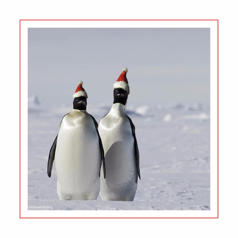 Kerstkaarten - Kerstkaart Pinguins met kerstmuts