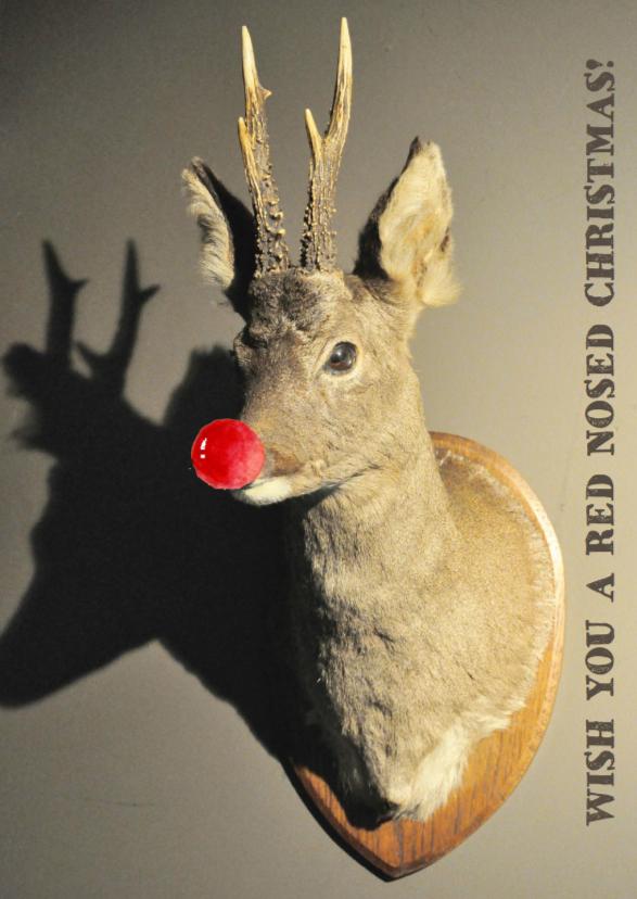 Kerstkaarten - Kerstkaart Rudolf rendier
