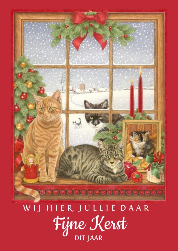 Kerstkaarten - Kerstkaart wij hier jullie daar fijne kerst dit jaar katten