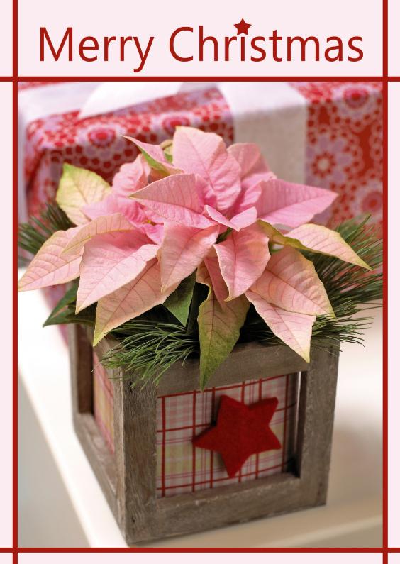 Kerstkaarten - kerststerkaart 11
