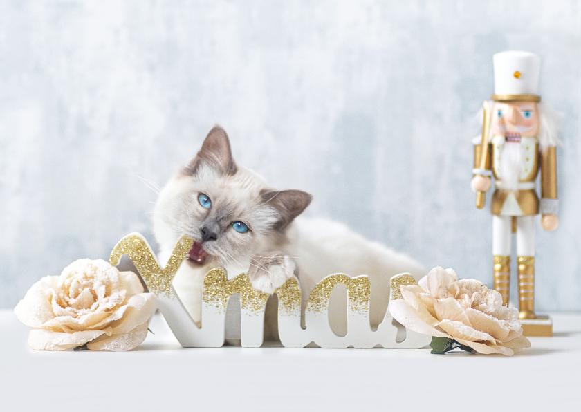 Kerstkaarten - Lieve Xmas kerstkaart met witte kitten en gouden notenkraker