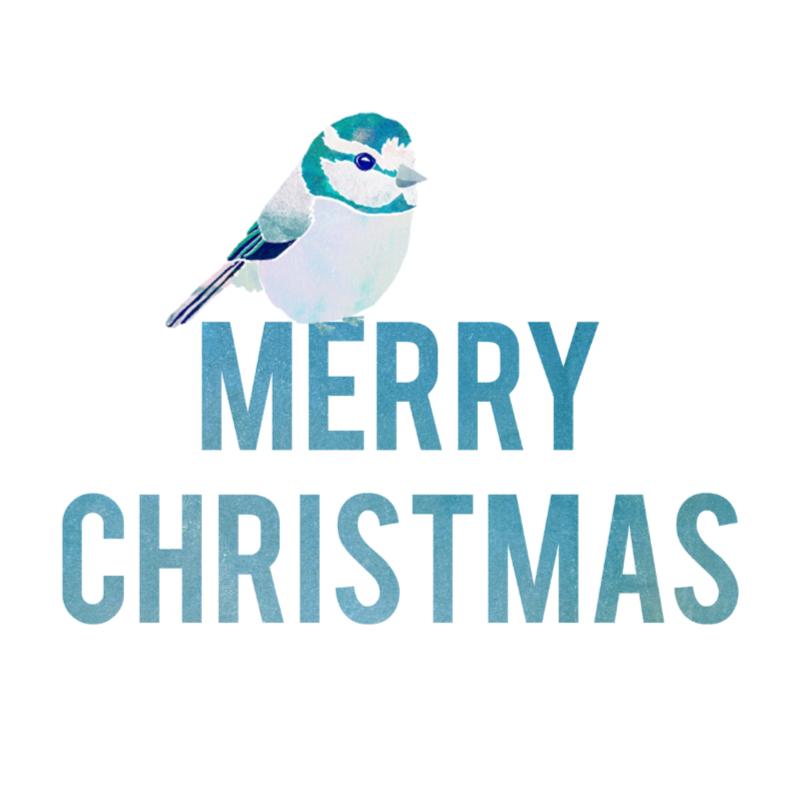 Kerstkaarten - Merry Christmas met vogel