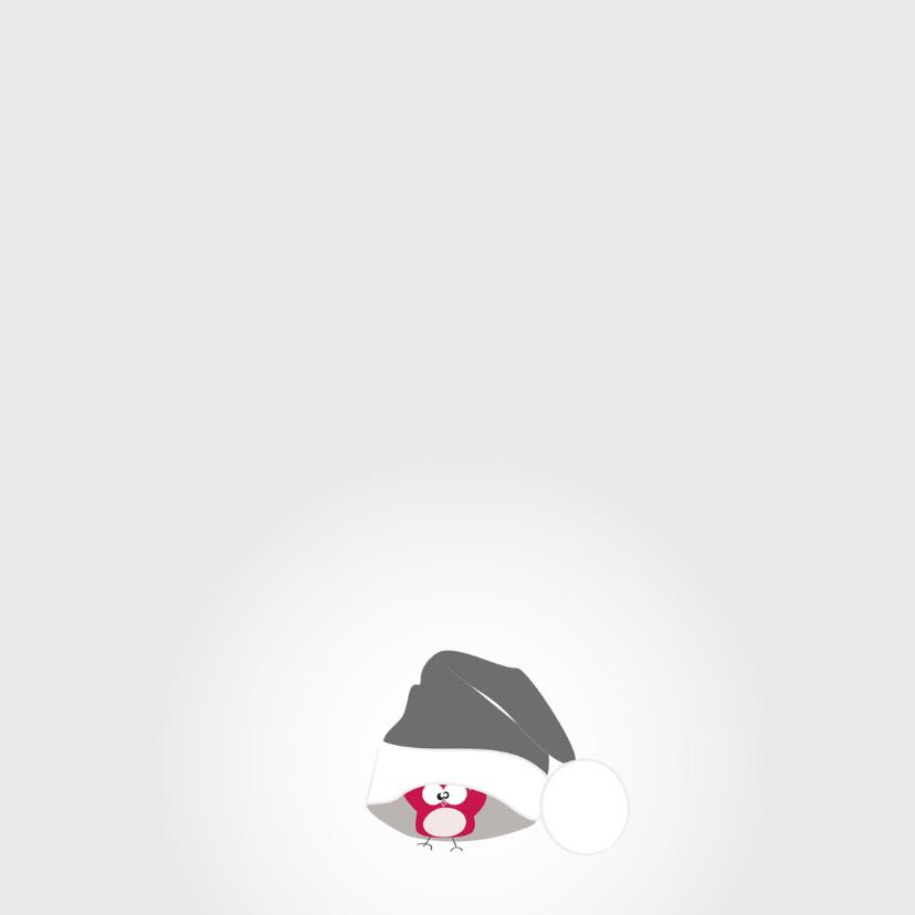 Kerstkaarten - Mo Card Klein uiltje met muts