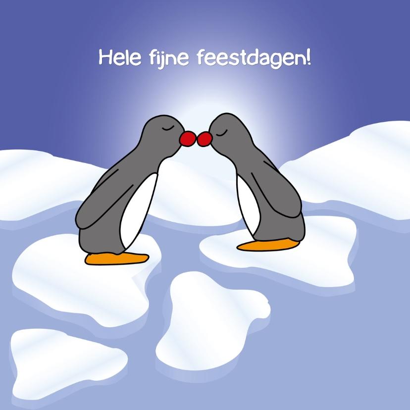 Kerstkaarten - Pinguïns rode neus - SZ