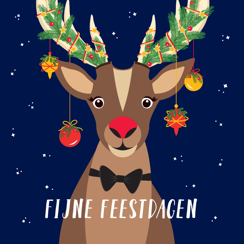 Kerstkaarten - Rudolf wenst jullie fijne feestdagen