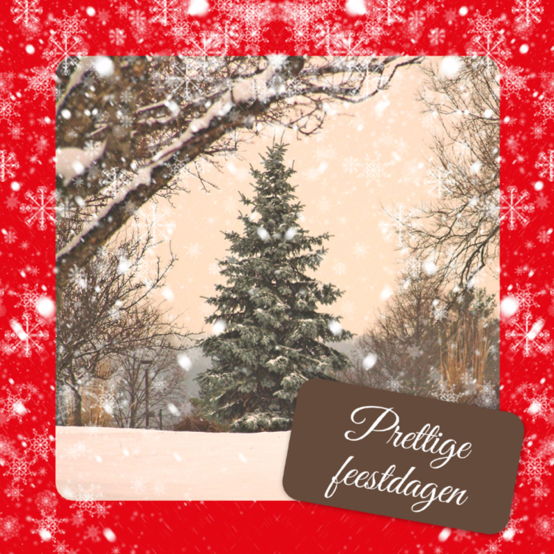 Kerstkaarten - Traditionele kerstkaart - DH