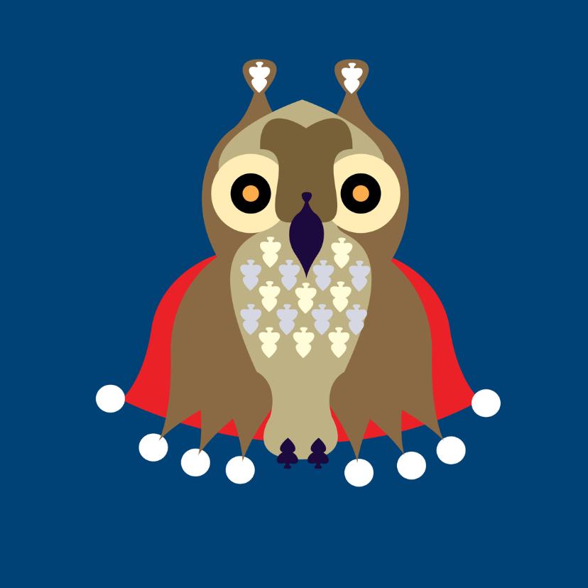 Kerstkaarten - Uil met een Kerst mantel