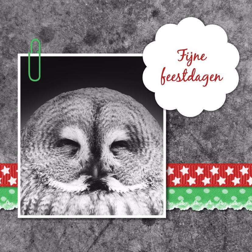 Kerstkaarten - Uil met linten - DH