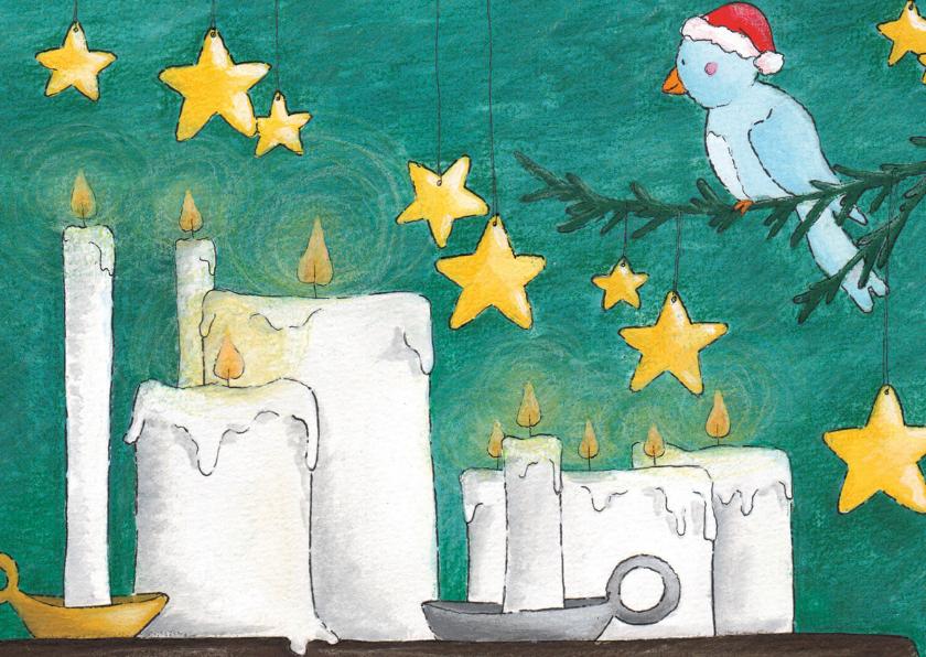Kerstkaarten - Vogeltjes in december
