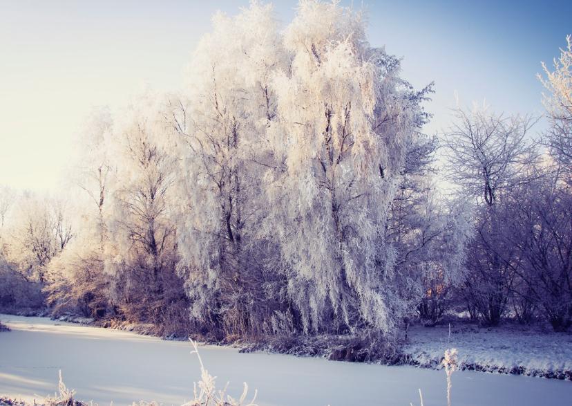 Kerstkaarten - winterlandscape 2016