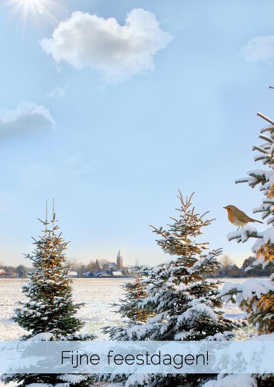 Kerstkaarten - Winterlandschap met roodborst