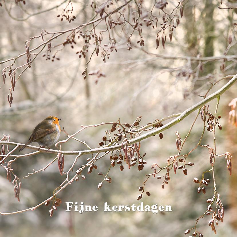Kerstkaarten - Winters bos met roodborstje