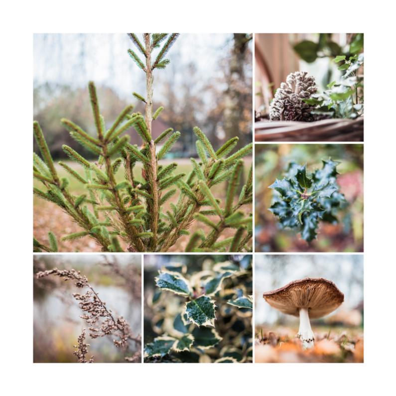 Kerstkaarten - winterse collage