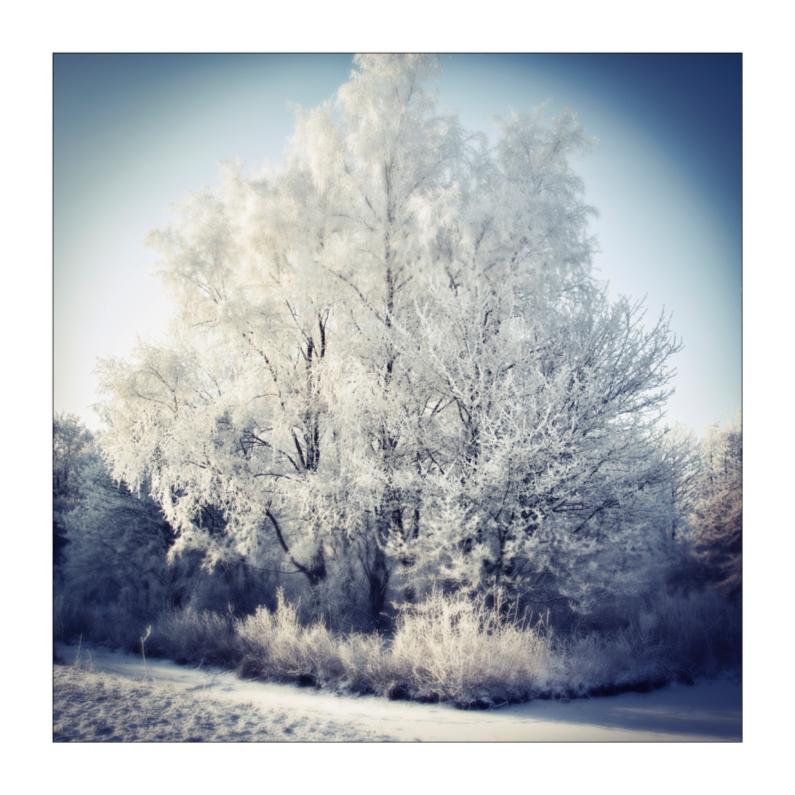 Kerstkaarten - Winterse kerstgroeten