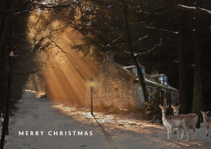 Wintersferen met de kerst 1