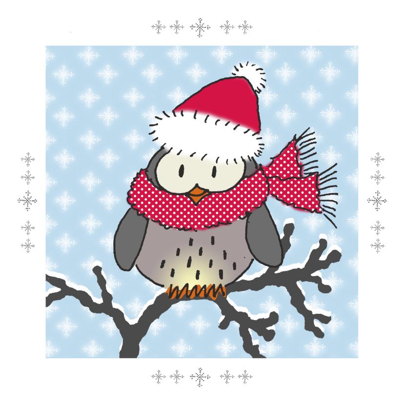 Kerstkaarten - Winteruil op takje