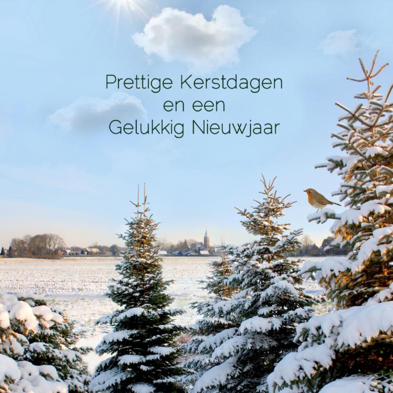 Kerstkaarten - Witte kerst met roodborst