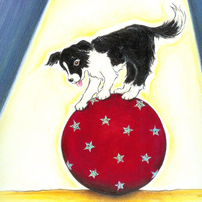 Kinderkaarten - Hondje Sendie op de circusbal
