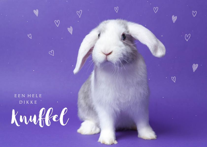 Kinderkaarten - Kinderkaart - Knuffel konijntje paars