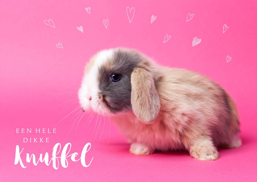 Kinderkaarten - Kinderkaart - Knuffel konijntje roze