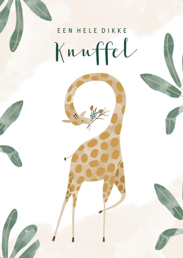 Kinderkaarten - Vrolijke kinderkaart jungle met giraf en dikke knuffel