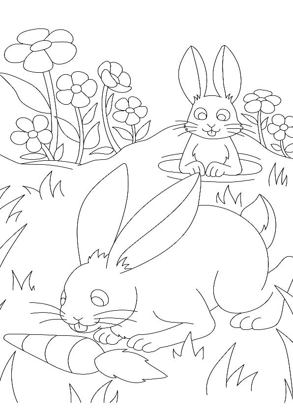 Kleurplaat kaarten - kleurplaatkaart konijn- MT