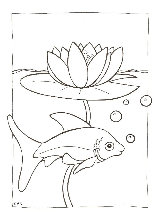 Kleurplaat kaarten - kleurplaatkaart vis