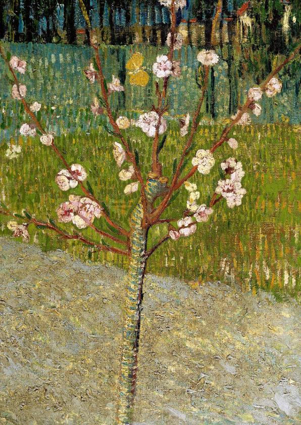 Kunstkaarten - Kunstjaart Vincent van Gogh. Perenboompje in bloesem