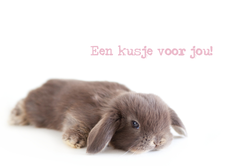 Liefde kaarten - Kus baby konijntje