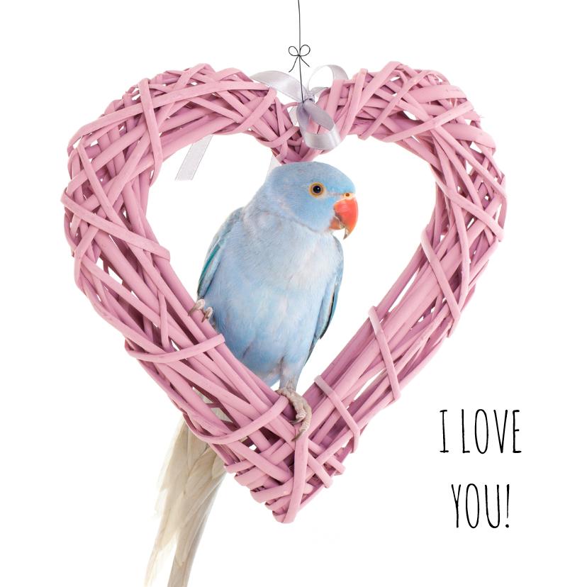 Liefde kaarten - Liefde - I Love you vogel