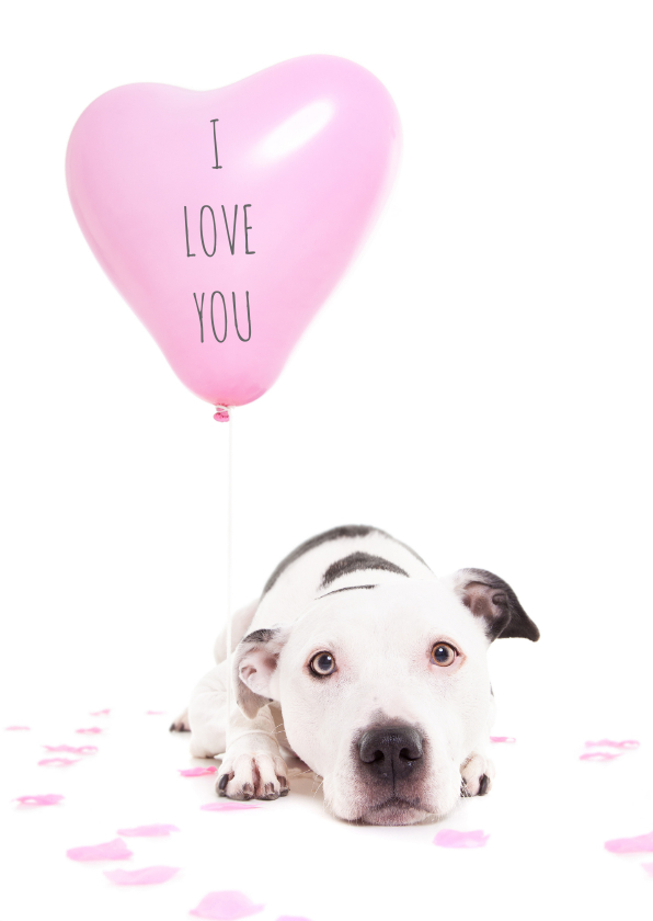 Liefde kaarten - Liefde kaart - Hond hart ballon
