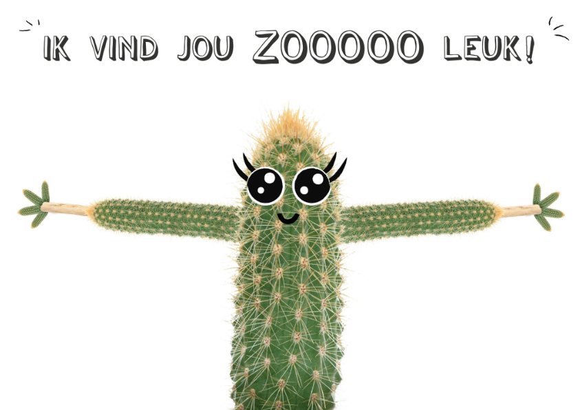 Liefde kaarten - Liefdeskaart met cactus met ik vind jou zooooo leuk!
