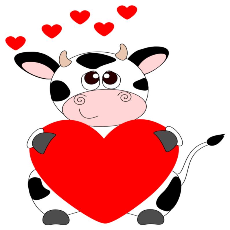 Liefde kaarten - Verliefd kijkende koe!