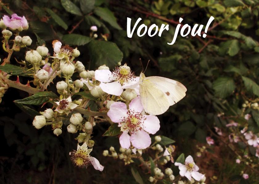 Moederdag kaarten - moederdag kaarten - vlinder