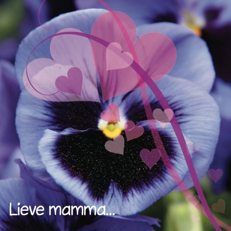 Moederdag kaarten - Moederdagkaart viooltje en eigen tekst