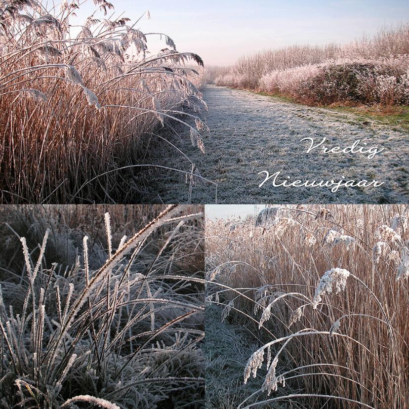 Nieuwjaarskaarten - Nieuwjaar vredig winterse natuur