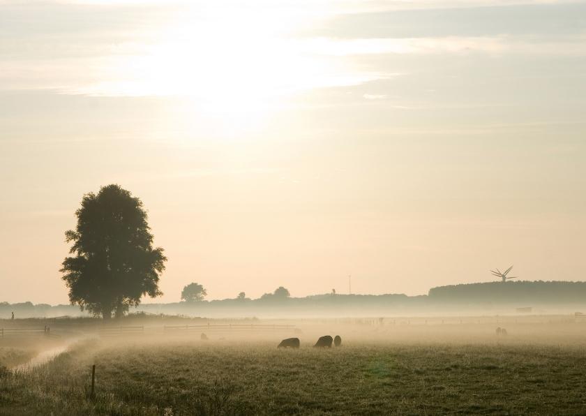 Rouwkaarten - Achter de wolk schijnt de zon