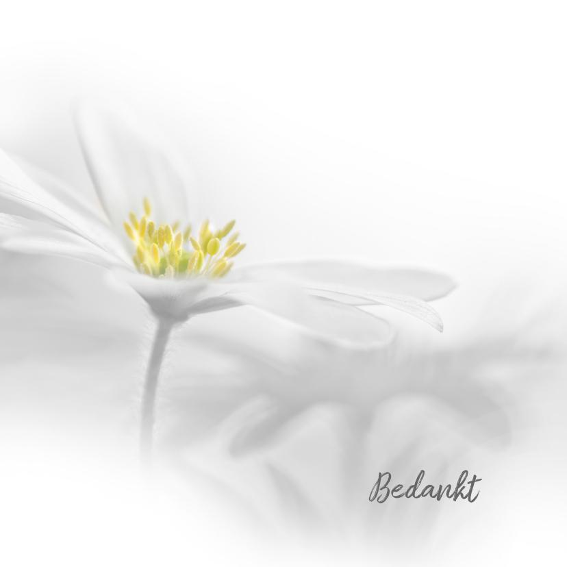 Rouwkaarten - Bedanken met witte anemoon
