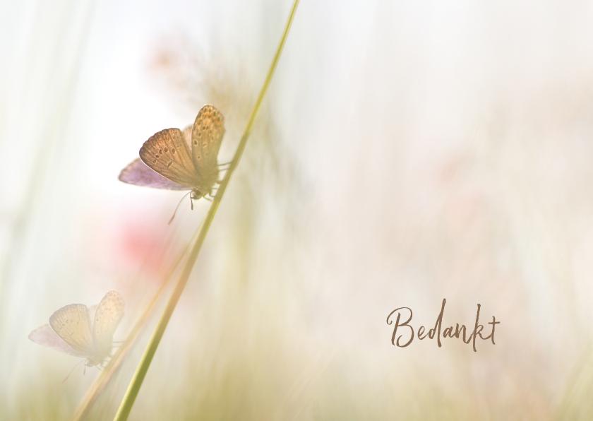 Rouwkaarten - Bedankkaart met vlinders