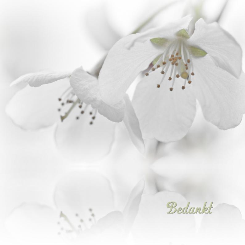 Rouwkaarten - Bedankkaart na overlijden-witte bloesem