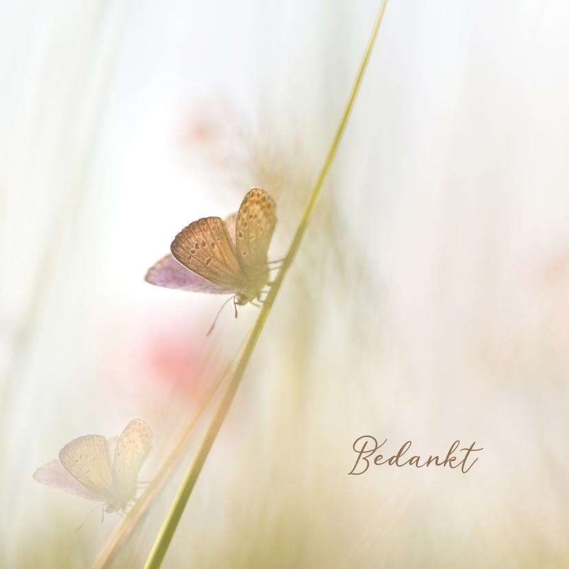 Rouwkaarten - Bedankkaart vlinders-vierkant