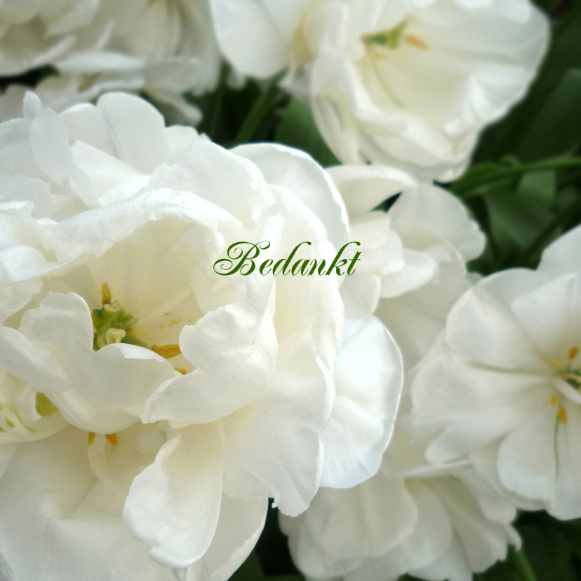 Rouwkaarten - Bedankt bloemen - witte tulp rozen