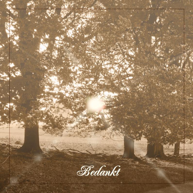 Rouwkaarten - Mooie bedankkaart met bomen in natuurlijke omgeving