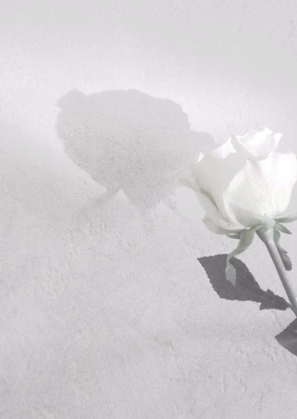 Rouwkaarten - Roos in zwartwit