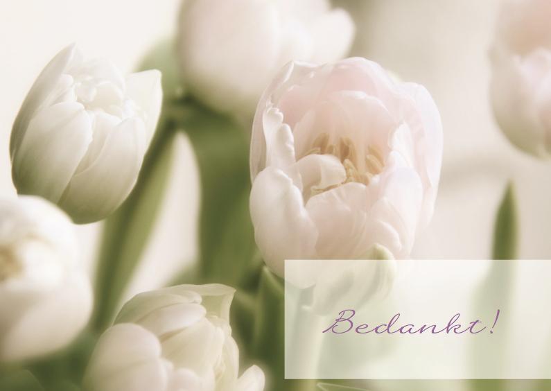 Rouwkaarten - Rouw bedankkaart roze tulp